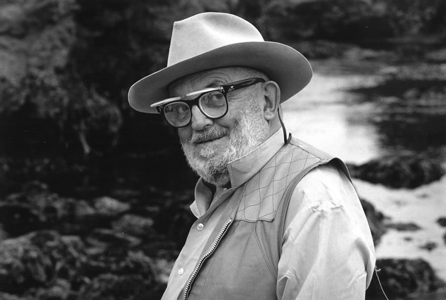 ansel adams - Ansel Adams -The Best Picture - Quote